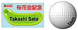 グリーン・ボール(長方形)